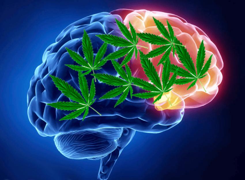 Does Marijuana Help With Anxiety